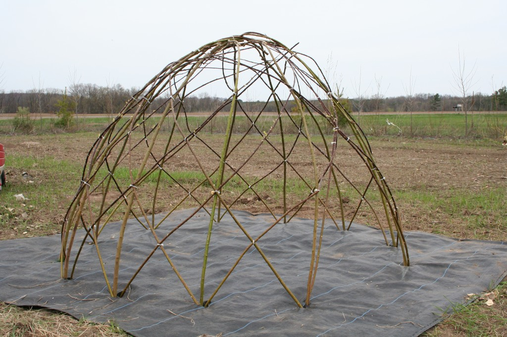 Finished dome, ready to grow.